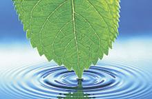 Кремниевая вода. Часть 1